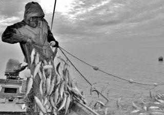 afn-fisherman-photo