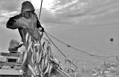 afn-fisherman-photo